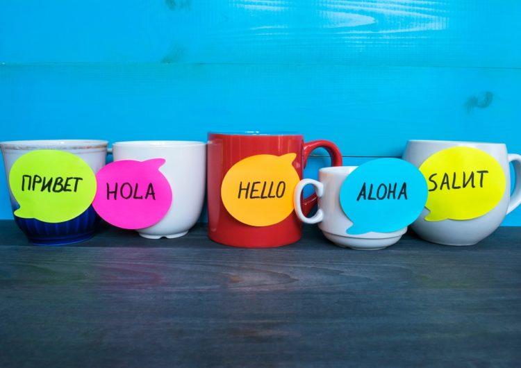 Les 5 choses à savoir sur les écoles de langue