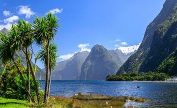 Les 17 choses à savoir sur la Nouvelle-Zélande avant votre séjour